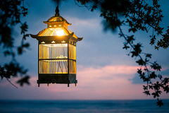 Lanternes pendant des arbres pour décorer à la cage à oiseaux de coucher du soleil Images stock