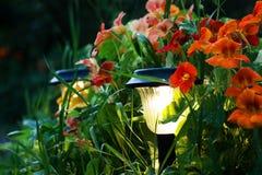 Lanterns in a garden Royalty Free Stock Photos