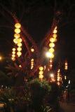 Lanterns hanged on tree Stock Photos