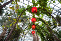 Lanterns hanging under walkway within the flower dome of Gardens by the Bay, Singapore Stock Images