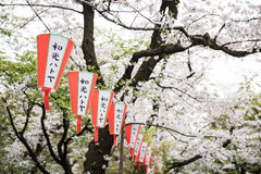 Lanterns with japanese words Stock Image