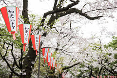 Lanterns with japanese words Royalty Free Stock Photography