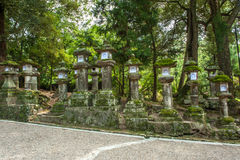 Lanterns in Nara Royalty Free Stock Image
