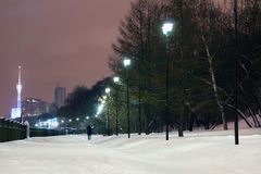 Lanterns near green trees on quay with white snow at winter. Evening in city Royalty Free Stock Photo