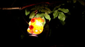 Lanterns At Night In Nature. Colorful Lantern Hanging On A Branch stock footage