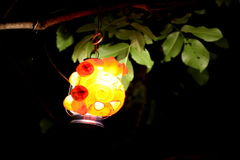 Lanterns At Night In Nature Ntsc. Colorful Lantern Hanging On A Branch stock video