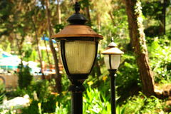 Lanterns in the park. Lanterns in a green forest  trees Stock Image