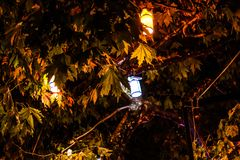 Lanterns On A Tree - Turkey royalty free stock photography