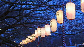 Lanterns in Sakura Festival Tokyo, Japan. Lanterns in Sakura Festival at walkway Ooyokogawa river , Tokyo, Japan. Text mean blessing in sakura festival stock video footage
