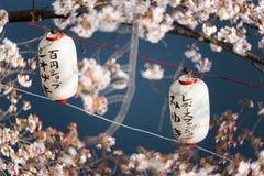 Lanterns in Sakura Festival at walkway Ooyokogawa river , Tokyo, Royalty Free Stock Image