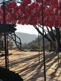 Lanterns Seoul royalty free stock images