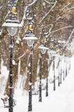 Lanterns in the winter park. Covered with snow Stock Photography