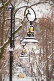 Lanterns in the winter park Stock Photography