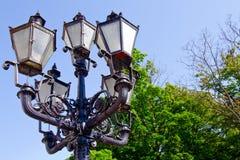 Lanters och trees arkivfoto