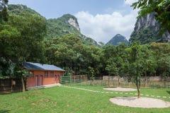 Lantgård för kinesisk stil Royaltyfria Foton