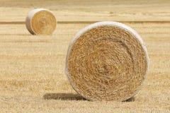 Lantgård Hay Harvest Arkivbild
