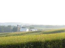 Lantgård i dalen Fotografering för Bildbyråer