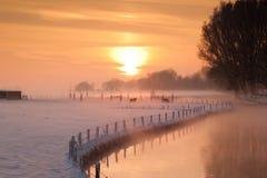 Lantgård i den holländska snöig vintern Arkivbilder