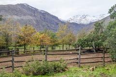Lantgård i den San Alfonso dalen, Chile arkivfoto