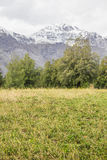 Lantgård i den San Alfonso dalen, Chile royaltyfria bilder