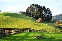 Lantgård i Nya Zeeland arkivfoto