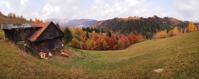 Lantgård i Valea Rece i Brasov Rumänien arkivbilder