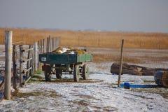 Lantgård i vinter Arkivfoton