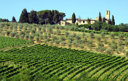 lantgård italy tuscany Royaltyfria Foton