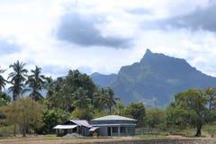 Lantgård Kokospalmer Palawan ö Royaltyfri Fotografi