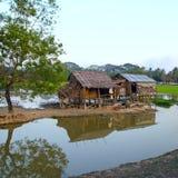 Lantgård Myanmar Royaltyfria Bilder