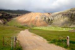 Lantgård nära vulkaniska berg i Island Arkivbilder