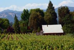 lantgård Napa Valley Arkivbilder