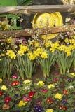 Lantgård och flora Royaltyfria Bilder