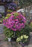 Lantgård- och trädgårdbarnkammare i Canby Oregon Fotografering för Bildbyråer