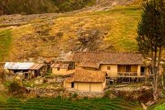 Lantgård på en kull på Ingapirca, Ecuador royaltyfri foto