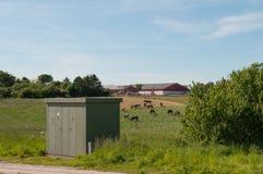 Lantgård precis förutom Aalborg i Danmark Royaltyfri Foto