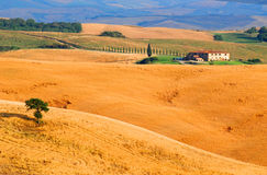 lantgård tuscany royaltyfri foto