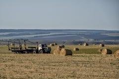 Lantgårdarbete i höst på fältet arkivbild