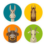 Lantgårddjur åsna, häst, tjur, vektor för symbol för getlägenhetdesign Royaltyfria Bilder