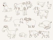 Lantgårddjur Fotografering för Bildbyråer