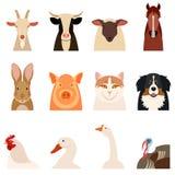 Lantgårddjur sänker symboler Arkivbilder
