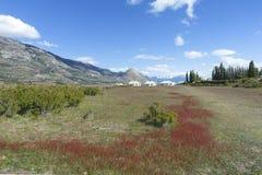 Lantgården av Estancia Cristina i nationalpark för Los Glaciares argentina patagonia royaltyfri bild
