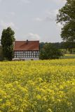 Lantgården i Maj med våldtar fältet, den Osnabrueck landregionen, lägre Sachsen, Tyskland Royaltyfria Foton