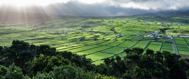 Lantgårdfält i den Terceira ön i Azores mot solen Arkivbilder