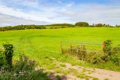 Lantgårdfält i Greenwayrutt från Castlebar till Westport arkivbild