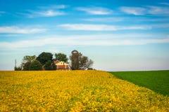 Lantgårdfält i lantliga Lancaster County, Pennsylvania Arkivbilder