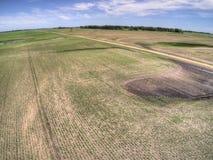 Lantgårdfält i lantliga North Dakota, Amerikas förenta stater arkivbilder