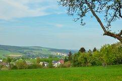 Lantgårdfält med den unga skörden från Tyskland royaltyfria foton
