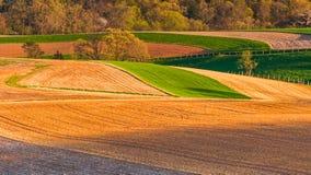 Lantgårdfält och Rolling Hills av sydliga York County, Pennsylva Royaltyfri Fotografi
