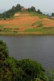 Lantgårdfält på en kulle Arkivbild